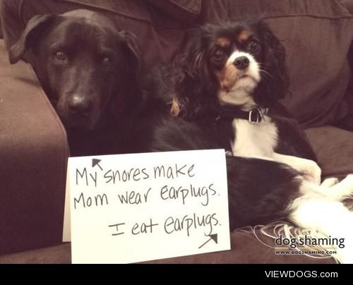 Damned if you do, damned if youdon't  Buddy: My snores make Mom…