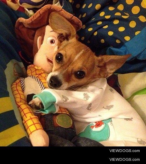 """Me an Woody going nighs now, k?"" via @rexdelfino…"
