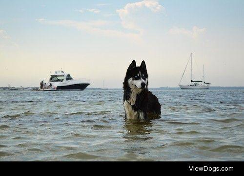 Captain of the high seas. thecarolinawife.tumblr.com Instagram:…