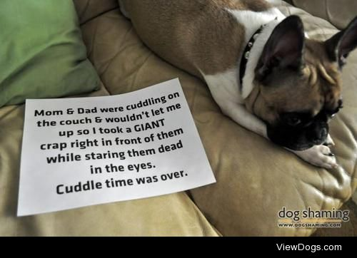 Revenge Poop  Mom & Dad were cuddling on the couch &…