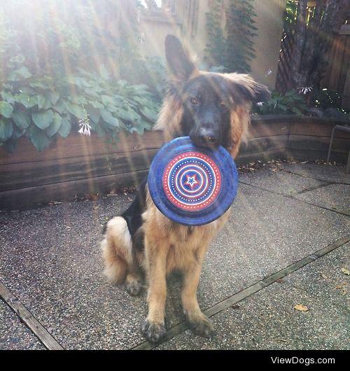 Frisbee anyone? http://itsodin.tumblr.com/