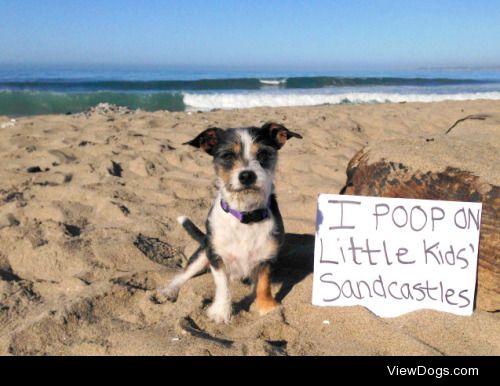 Sand Crap'stles  I poop on little kids' sandcastles…