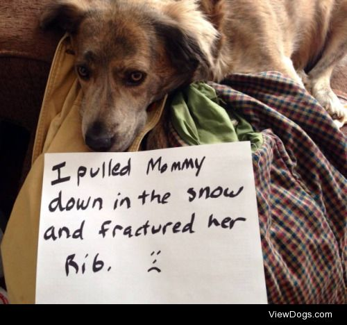 """I was just giving you aribbing!  """"I pulled Mommy down in the…"""