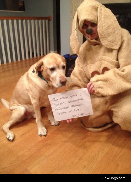 Happy Howl-o-weenie!  My mom wore a species insensitive…