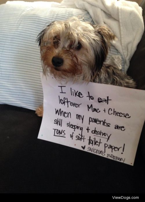You're the Cheese to my Macaroni  Woke up to WWIII in the…